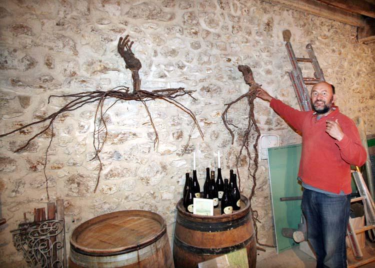 1georges_laval_conventional-versus-organic_vines
