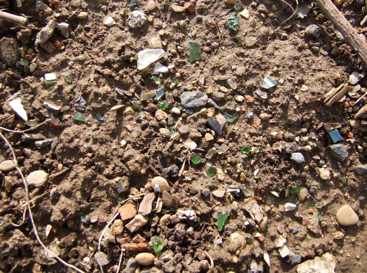 1champagne_vineyard_plastic_glass_debris