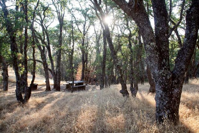 1mount_diablo_campground