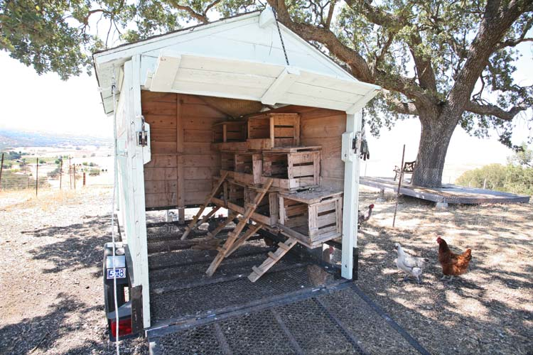 1AmBith_estate_wheeled_hen_coop
