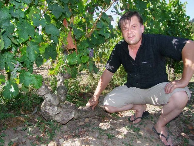 1domaine_R_les_folies_70year-old_vines