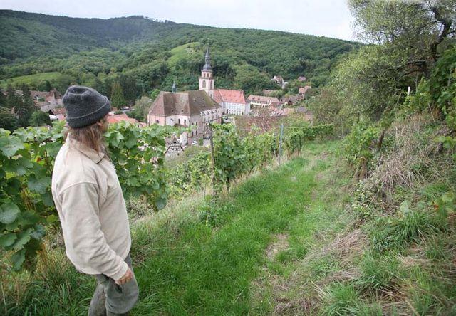 1andre_durrmann_andlau_kastelberg_terraces_abbey