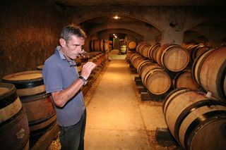 1patrick_bize_tasting_in_barrel_cellar