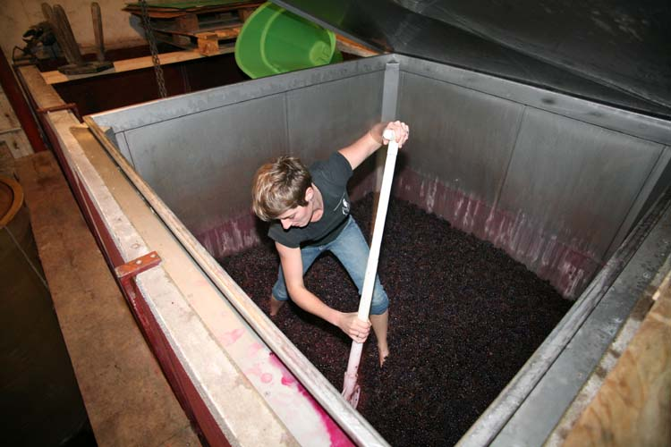 1france_gonzalvez_vidant_cuve_maceration