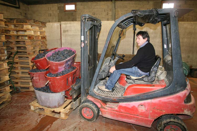 1jean_foillard_forklifting_grapes_boxes
