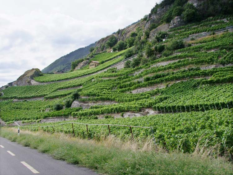 1news_sion_rhone_valley_switzerland