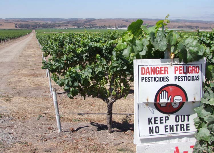 1news_paso_robles_danger_pesticides