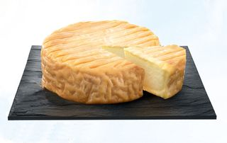 1epoisses_slice_of_cheese