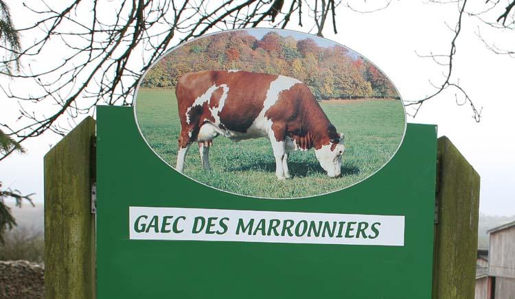 1epoisses_cheese_farm_les_marronniers