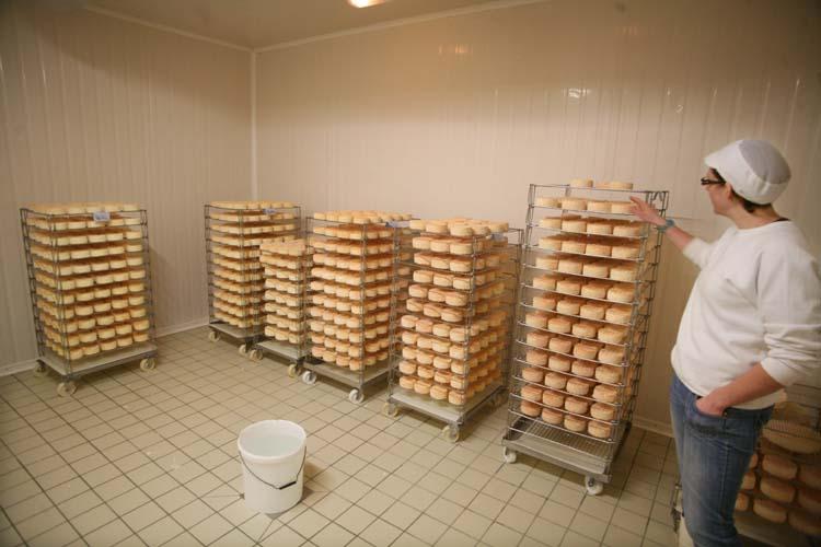 1abbaye_pierre_qui_vire_haloir_cheese_cellar