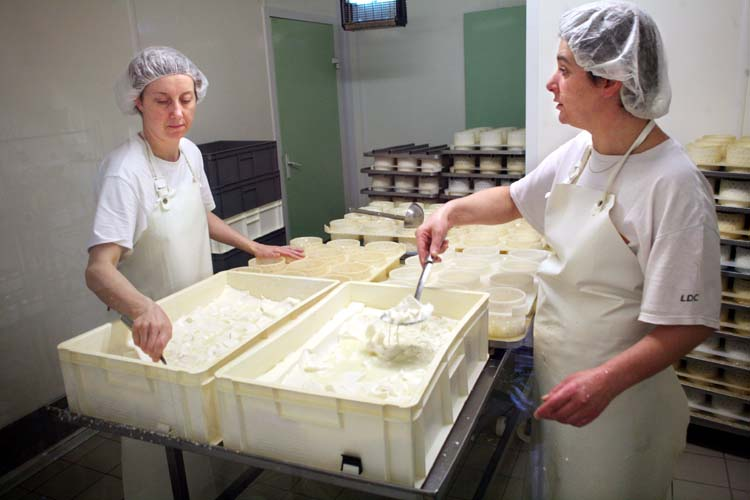 1epoisses_cheese_farm_filling_the_moulds