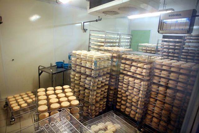 1epoisses_cheese_farm_maturation_room