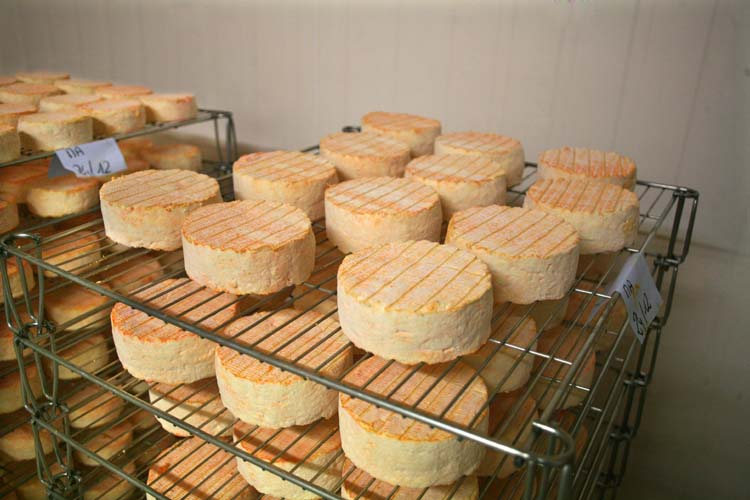 1abbaye_pierre_qui_vire_martuation_room_cheeses