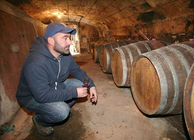 1laurent_saillard_cellar_3oblong_barrels