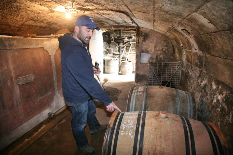 1laurent_saillard_cellar_2casks_sauvignon