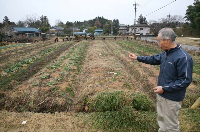 1zakkoku_micro_brewery_baba-san_vegetable_crops
