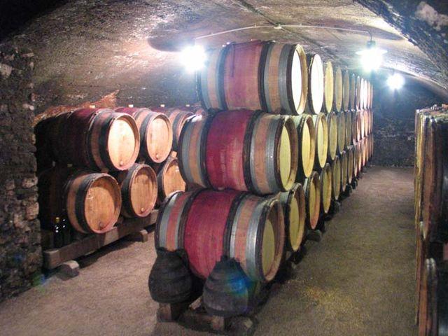 1beaujoloise2006_lapierre_cellar