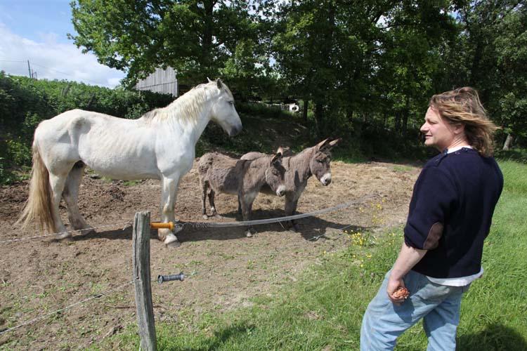 1maisonsbrulees_praline_and_donkeys