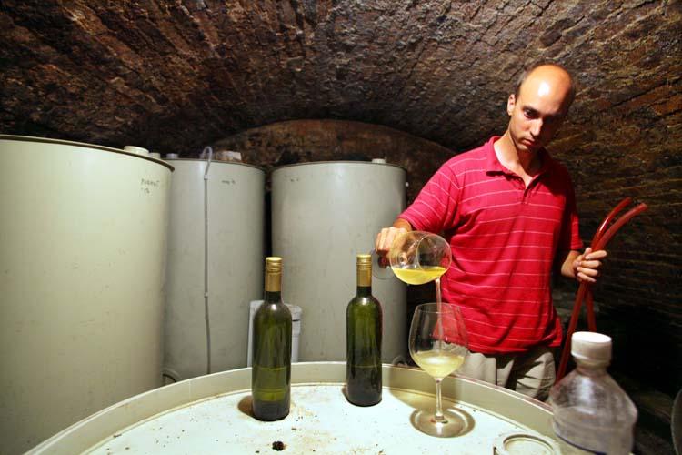 1balint_losonci_cellar_olasz_riesling2013