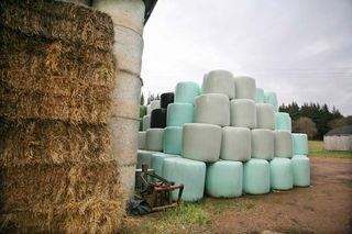 1abbaye_pierre_qui_vire_hay_bales_plastic-sealed_bales