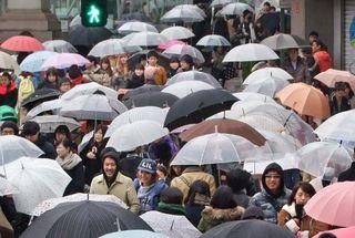 1festivin_tokyo2014_umbrellas_omotesando