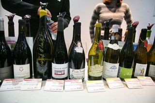 1festivin_tokyo2014_fruits_sauvages