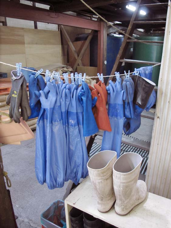1shinkame_shuzo_hanging_gloves_boots