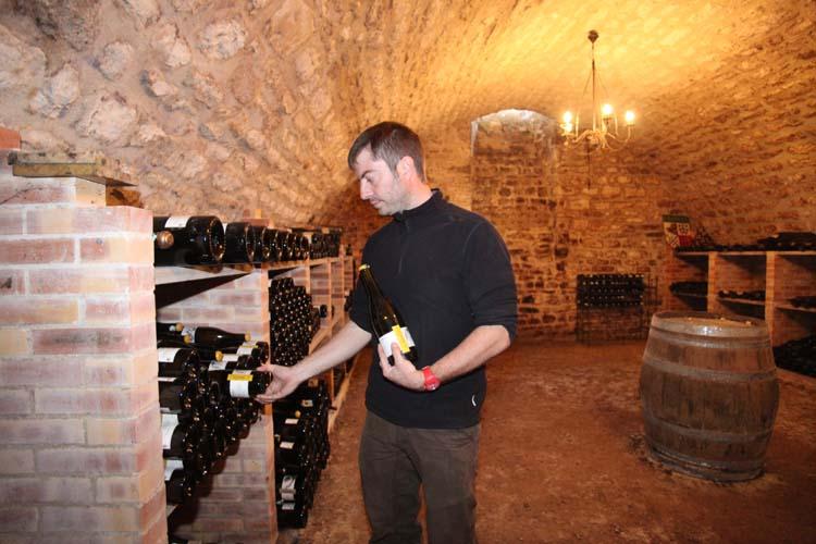 1pico_pattes_loup_chablis_bottle_cellar