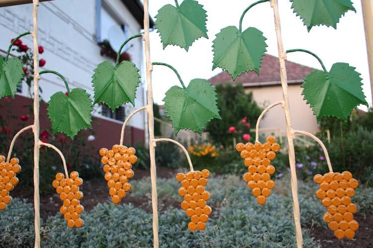 11Gyongyospata_house_fence_grapes_vine_leaves