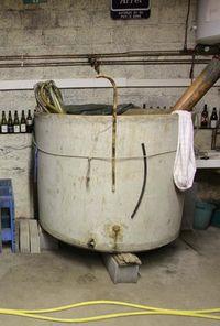 1arbre_blanc_auvergne_cement_fermenter