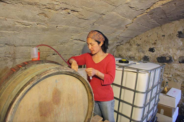 1mito_inoue_auvergne_siphooning_gamay