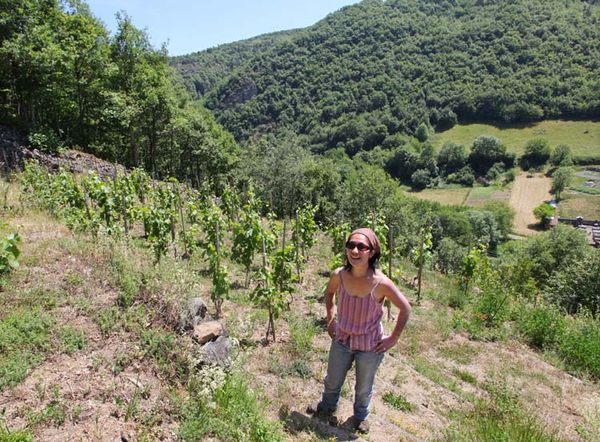 Wine Tasting  Vineyards  In France  Mito Inoue  Auvergne  Loire