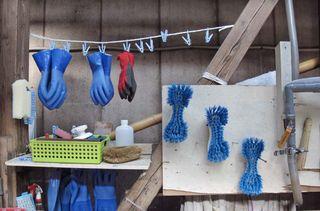 1shinkame_shuzo_gloves_brushes