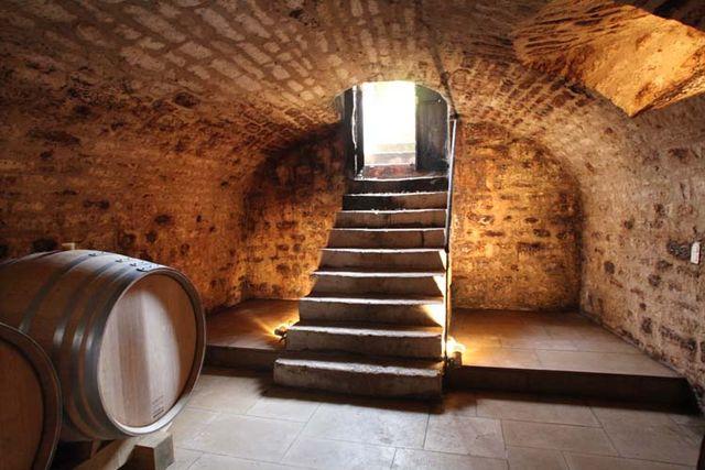 1pico_pattes_loup_chablis_stairs_cellar