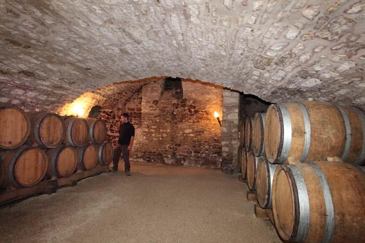 1pico_pattes_loup_chablis_cellar_room