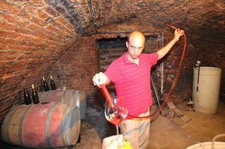 1balint_losonci_cellar_pinot-noir_barrel