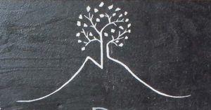 1arbre_blanc_auvergne_white_tree_volcanoe