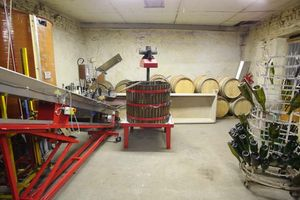 1arbre_blanc_auvergne_press_conveyor_belt