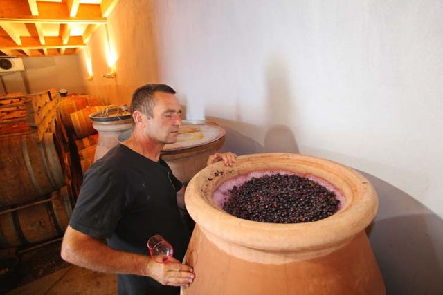 1jean-claude_lapalu_grapes_in_amphorae