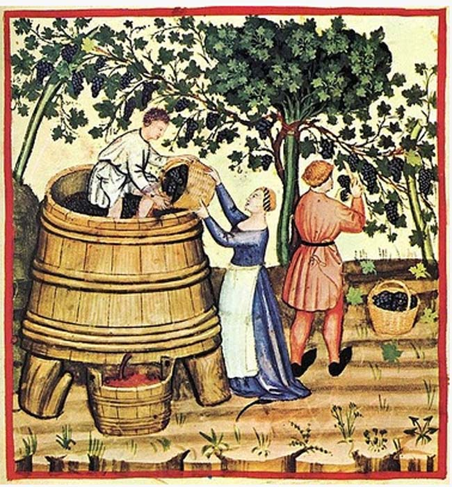1wine_middle-ages_foot-stomping_harvest