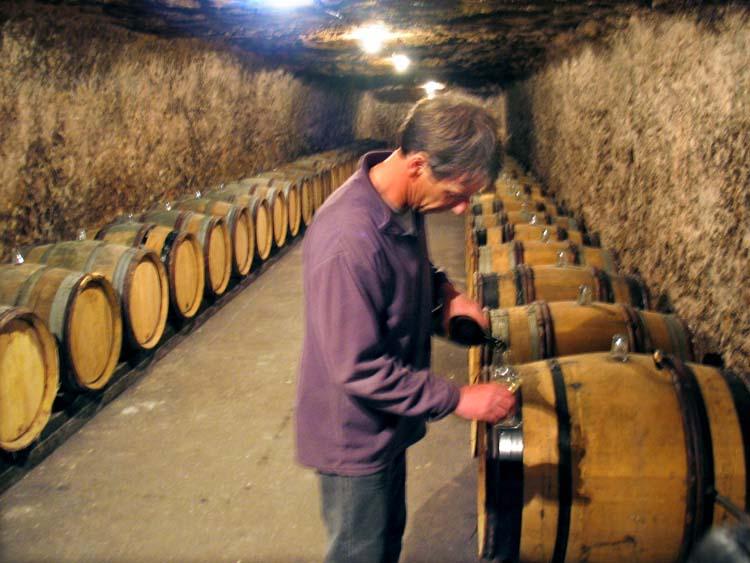 1lemaire-fournier_nicolas_renard_wine_from_cask