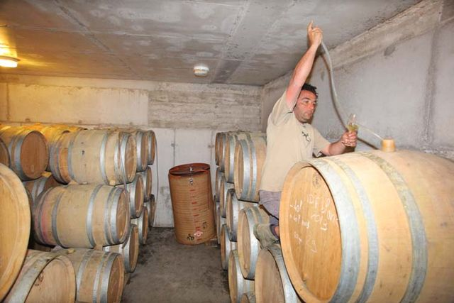 1deux_terres_manu_filling_a_glass_from_cask