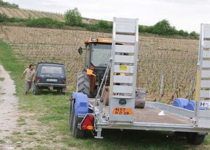 1deux_terres_vineyard_tractor_trailer