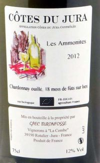 1buronfosse_jura_les_ammonites2012