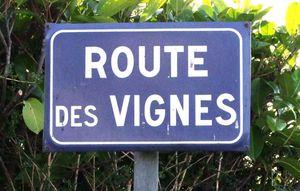 1puzelat2015_les-montils_route_vignes