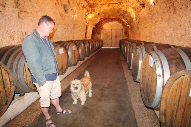 1francois_chidaine_husseau_tunnel_cellar