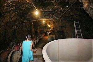 1sebastien_bobinet_deeper_in_cellar