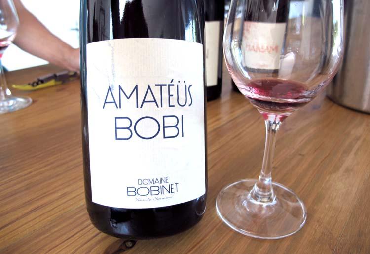 1sebastien_bobinet_amateus_bobi