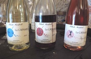 1pet-nat_wine_fair_pascal_potaire_cuvees
