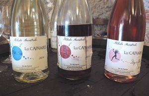 1pet-nat_wine_fair_pascal_potaire_cuvees